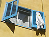 blue wooden slatted window shutter with clothes drying in the sun<br /> <br /> persianas azules con ropa secando en el sol<br /> <br /> blauer Holzfensterladen mit Wäsche, die in der Sonne trocknet<br /> <br /> 2272 x 1704 px<br /> 150 dpi: 38,47 x 28,85 cm<br /> 300 dpi: 19,24 x 14,43 cm