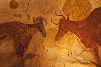 Europe/France/Aquitaine/24/Dordogne/Périgord Noir/Montignac: Grotte de Lascaux II - Grottes ornée  paléolithique - Vache rouge [Non destiné à un usage publicitaire - Not intended for an advertising use]