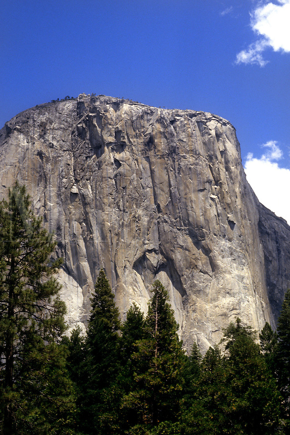 Famous rock of granite El Capitan in Yosemite National Park California US