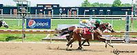Edson's Ridge winning at Delaware Park on 6/1/13