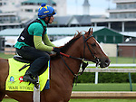 April 26, 2015 Kentucky Derby and Oaks workouts, Churchill Downs.  War Story, owner Christopher T. Dunn and Loooch Racing Stable, trainer Tom Amoss. By Northern Afleet x Belle Watling (Pulpit) ©Mary M. Meek/ESW/CSM