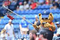 """Asheville Tourists mascot Ted E Tourists entertains the crowd with the crawdads he caught during a game against the Hickory Crawdads on July 26, 2021 at McCormick Field in Asheville, NC. Tourists players were wearing jerseys for the """"Yacumamas de Asheville"""", as part of Minor League Baseball's """"Copa de la Diversion"""". (Tony Farlow/Four Seam Images)"""