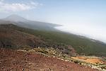 Foto: VidiPhoto..PLAYA DE LAS AMERICAS - Het vulkanische binnenland van Tenerife. Tenerife is het grootste eiland van de Canarische Eilanden, een tot Spanje behorende eilandengroep in de Atlantische Oceaan, 200 km van de kust van Marokko en de Westelijke Sahara. Tenerife heeft de meeste inwoners en met ruim 1 miljoen mensen op 2057 vierkante kilometer is het het dichtstbevolkte eiland van Spanje. Het eiland is van vulkanische oorsprong. De grootste vulkaan van het eiland is El Teide (foto), die met 3718 meter ook de hoogste berg van het grondgebied van Spanje is..