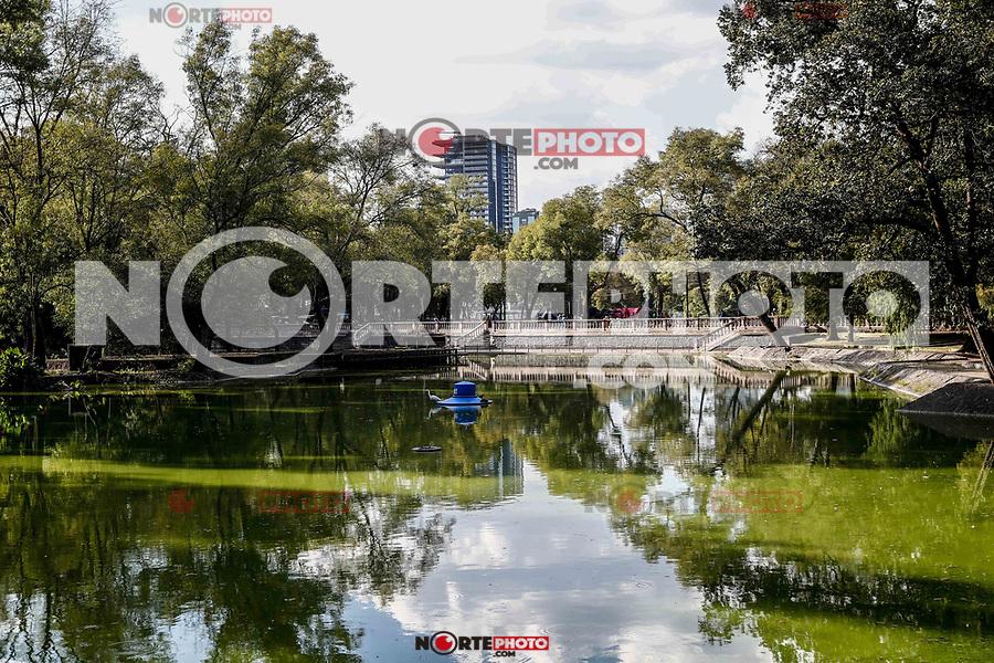 El bosque de Chapultepec. parque urbano  en la Ciudad de México.<br /> (Foto: Luis Gutierrez / NortePhoto.com).