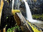 Svartifoss waterfall and basalt columns at Vatnajokull National Park, southeast Iceland