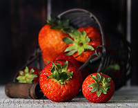 Strawberries in a rustic setting<br /> Photo By Adam Scull/PHOTOlink.net