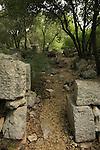 Hurvat Danaila in the Upper Galilee