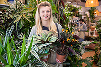 BNPS.co.uk (01202) 558833<br /> Pic: WillDax/BNPS<br /> <br /> Hope Dean who runs a Interior Plant Design shop called, 'Wild Roots'<br /> <br /> A complex of ten small independent businesses that are not paying rent or business rates could hold the answer for saving the British high street.<br /> <br /> Kingland is an ambitious initiative aimed at breathing new life into the struggling town centre in Poole, Dorset, which people said had become like a 'ghost town'.<br /> <br /> The new development has been billed as a 'boutique shopping experience' and the owners of the small independents do not have to pay any rent or business rates for the first two years.<br /> <br /> The shops offer a diverse range with a fishmonger, zero waste grocery store, custom surfboard maker, coffee shop, gallery, restored furniture shop, fragrance shop, plant and interiors shop, design studio and a gin bar and shop.