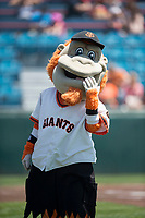 San Jose Giants mascot Gigante poses for a photo before a California League game against the Lancaster JetHawks at San Jose Municipal Stadium on May 13, 2018 in San Jose, California. San Jose defeated Lancaster 3-0. (Zachary Lucy/Four Seam Images)