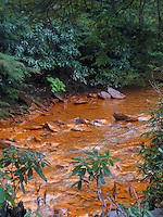 Martin Creek, close to its confluence with Muddy Creek, is heavily polluted by acid mine drainage (AMD)  from  coal mines in the area abandoned decades ago. Not far upstream of the confluence Muddy Creek is clear enough to support native brook trout. The orange sludge in Martin Creek is caused by oxidation of sulfide minerals closely associated with coal seams, particularly pyrite, which produces sulfuric acid that subsequently precipitates iron into the water. The increased acidity and dissolved metals effectively result in a stream devoid of living things. The Cheat River watershed, West Virginia, USA.