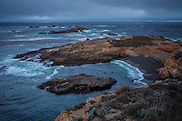 Seashore, Point Lobos