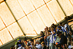 Kilmarnock fans cheering their team from the  Chadwick Stand. Kilmarnock 2 Ayr United 0, Scottish Championship, August 2nd 2021. Following Kilmarnock's relegation in 2020-21, the first game of the new season is the Ayreshire Derby, the first league match between the teams in 28 years. Due to relaxation of Covid restrictions the match was played in front of a crowd of 3200 Kilmarnock fans. The game was shown live on BBC Scotland.