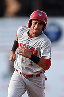Auburn Doubledays second baseman Bryan Mejia (1) running the bases during a game against the Batavia Muckdogs on August 31, 2014 at Dwyer Stadium in Batavia, New York.  Batavia defeated Auburn 7-6.  (Mike Janes/Four Seam Images)
