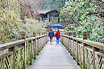 Two women with umbrella cross the Walking Bridge, Crystal Springs Rhododendron Garden crossesCrystal Springs Lake between lush botanical gardens with over 2,500 rhododenrons and azaleas.  Portland, Oregon Parks.