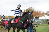 8th Apprentice Rider Claiming Hurdle - Be Counted