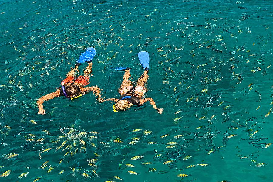 Cool Runnings, Barbados