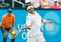 19-06-12, Netherlands, Rosmalen, Tennis, Unicef Open, David Ferrer
