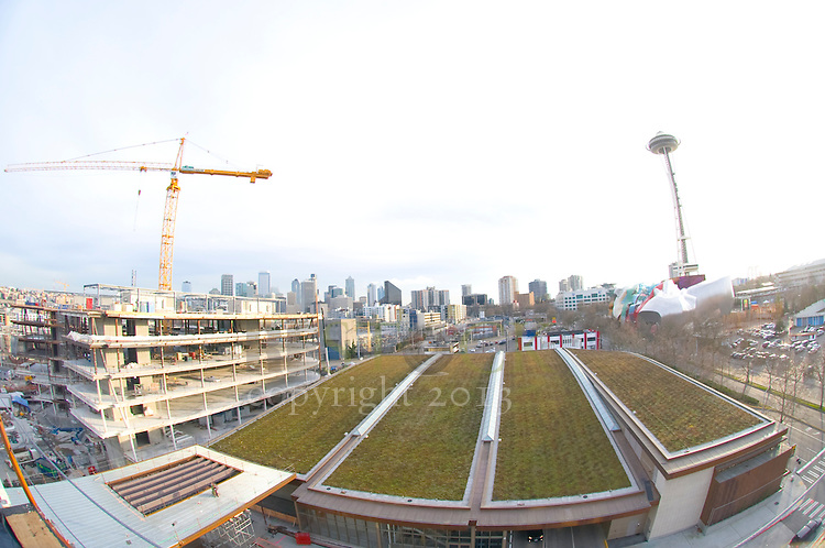 Seattle Skyline with Construction and Green Rooftop