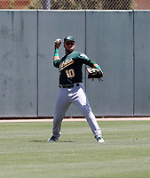 Rafael Rincones - Oakland Athletics 2019 extended spring training (Bill Mitchell)