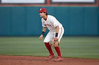 North Carolina State Wolfpack second baseman Will Wilson (8) on defense against the Louisville Cardinals at Doak Field at Dail Park on March 24, 2017 in Raleigh, North Carolina. The Wolfpack defeated the Cardinals 3-1. (Brian Westerholt/Four Seam Images)