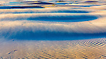 Winds build sand dunes at Grayland Beach, State Park, Tokeland Beach, on the central Washington Paciific Coast south of Westport\.
