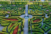 France, Indre-et-Loire (37), Villandry, Jardins du château de Villandry en août, vue depuis les terrasses supérieures sur le jardin d'ornement, topiaires d'if, haies de buies, et plantes annuelles (begonia semperflorens...)