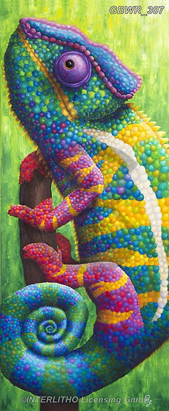 Simon, REALISTIC ANIMALS, REALISTISCHE TIERE, ANIMALES REALISTICOS, innovativ, paintings+++++RachelFroud_Chameleon,GBWR307,#a#, EVERYDAY