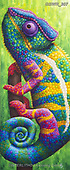 Simon, REALISTIC ANIMALS, REALISTISCHE TIERE, ANIMALES REALISTICOS, innovativ, paintings+++++RachelFroud_Chameleon,GBWR307,#a#, EVERYDAY