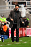Saturday 17 November 2012<br /> Pictured: Swansea manager Michael Laudrup<br /> Re: Barclay's Premier League, Newcastle United v Swansea City FC at St James' Park, Newcastle Upon Tyne, UK.