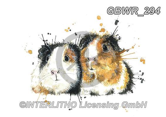 Simon, REALISTIC ANIMALS, REALISTISCHE TIERE, ANIMALES REALISTICOS, innovativ, paintings+++++KatherineWilliams_SplatterGuineaPigs,GBWR294,#a#, EVERYDAY