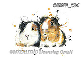 Simon, REALISTIC ANIMALS, REALISTISCHE TIERE, ANIMALES REALISTICOS, innovativ, paintings+++++KatherineWilliams_SplatterGuineaPigs,GBWR294,#a#, EVERYDAY