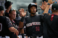 Fayetteville Woodpeckers Corey Julks (10) high fives teammates during a Carolina League game against the Down East Wood Ducks on August 13, 2019 at SEGRA Stadium in Fayetteville, North Carolina.  Fayetteville defeated Down East 5-3.  (Mike Janes/Four Seam Images)