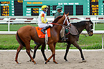 February 21, 2015: Golden Soul with Brian J Hernandez up in the Fairgrounds Handicap at the New Orleans Fairgrounds Risen Star Stakes Day. Steve Dalmado/ESW/CSM