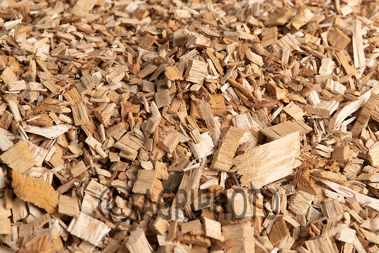 27-4-2021 Wood-chip Drying On A Grain Store Flat Floor, The Chip Will Be Used In The Farms Biomass Boiler To Dry Grain.<br /> ©Tim Scrivener Photographer 07850 303986<br />      ....Covering Agriculture In The UK....