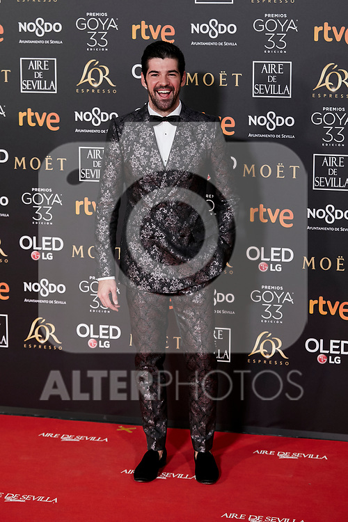 Miguel Angel Munoz attends to 33rd Goya Awards at Fibes - Conference and Exhibition  in Seville, Spain. February 02, 2019. (ALTERPHOTOS/A. Perez Meca)