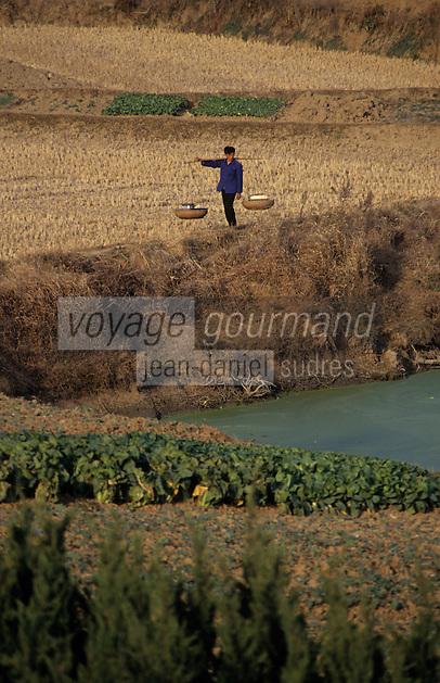 Asie/Chine/Jiangsu/Env Nankin: La campagne - Paysan rentrant du marché avec sa palanche sur le dosPHOTO D'ARCHIVES // ARCHIVAL IMAGES<br /> CHINE 1990