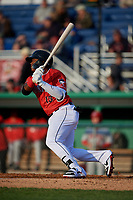 Batavia Muckdogs Albert Guaimaro (13) bats during a NY-Penn League game against the Auburn Doubledays on June 14, 2019 at Dwyer Stadium in Batavia, New York.  Batavia defeated 2-0.  (Mike Janes/Four Seam Images)