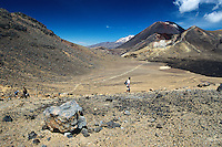 Hikers on Tongariro Crossing Track with Mt. Ngauruhoe 2291m behind, Tongariro National Park, Central Plateau, North Island, New Zealand