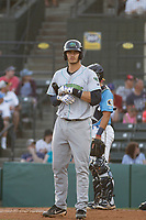 Lynchburg Hillcats catcher Martin Cervenka (13) at bat during a game against the Myrtle Beach Pelicans at Ticketreturn Field at Pelicans Ballpark on April 14, 2017 in Myrtle Beach, South Carolina. Lynchburg defeated Myrtle Beach 5-2. (Robert Gurganus/Four Seam Images)