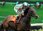 LOUISVILLE, KY - MAY 28: Annulment, ridden by Gary Stevens, led the first time through the stretch in the mile and a half Keertana Stakes at Churchill Downs. (Photo by Mary M. Meek/Eclipse Sportswire/Getty Images)