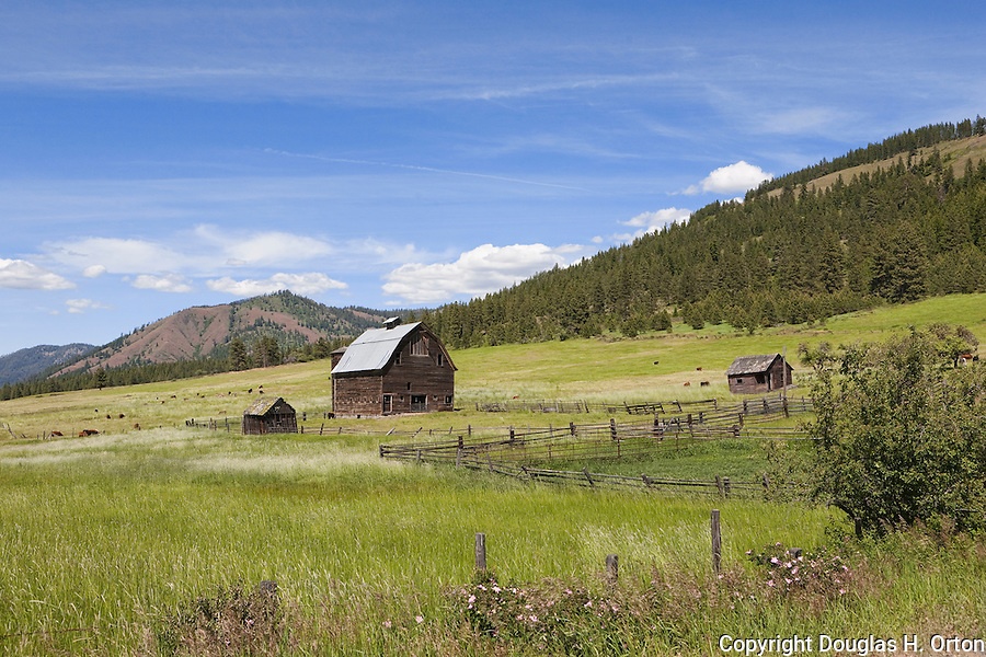 An aging ranch graces the Teanaway River Valley near Cle Elum, Washington.