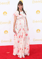 LOS ANGELES, CA, USA - AUGUST 25: Actresss Amanda Peet arrives at the 66th Annual Primetime Emmy Awards held at Nokia Theatre L.A. Live on August 25, 2014 in Los Angeles, California, United States. (Photo by Celebrity Monitor)