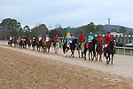 HOT SPRINGS, AR - FEBRUARY 19: The post parade before the running of the Southwest Stakes at Oaklawn Park on February 19, 2018 in Hot Springs, Arkansas. (Photo by Justin Manning/Eclipse Sportswire/Getty Images)