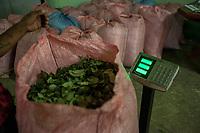 """A supporter of former Bolivian President Evo Morales, known as coca grower """"cocalero"""", weighs a sack packed with coca leaves in the local coca market, in Entre Rios, Chapare province, Bolivia. November 27, 2019.<br /> Un partisan de l'ancien président bolivien Evo Morales, connu sous le nom de cultivateur de coca """"cocalero"""", pèse un sac rempli de feuilles de coca sur le marché local de la coca, à Entre Rios, province du Chapare, Bolivie. 27 novembre 2019."""