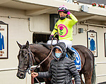 MAR 06, 2021 : Chateau with aboard Kendrick Carmouche, wins the Tom Fool Handicap, for 4 year olds & up, going 6 furlongs, at Aqueduct Racetrack, Ozone Park, NY. Sue Kawczynski-Eclipse Sportswire-CSM
