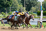 SARATOGA SPRINGS - AUGUST 27: Cavorting #5, ridden by Javier Castellano, wins the Personal Ensign Stakes on Travers Stakes Day at Saratoga Race Course on August 27, 2016 in Saratoga Springs, New York. (Photo by Dan Heary/Eclipse Sportswire/Getty Images)