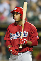 Memphis Redbirds outfielder Oscar Taveras #15 at bat during the Pacific Coast League baseball game against the Round Rock Express on April 24, 2014 at the Dell Diamond in Round Rock, Texas. The Express defeated the Redbirds 6-2. (Andrew Woolley/Four Seam Images)