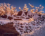 Aztec Ruins from Above (Infrared) ©2016 James D Peterson.  This is one of the best preserved - and reconstructed - Anasazi villages in the Southwest, and also one of the easiest to visit.  Because it's situated near the Animus River, it is surrounded by Cottonwood trees.