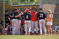 Ball State Cardinals second baseman Noah Navarro (8) high fives teammates during a game against the Saint Joseph's Hawks on March 9, 2019 at North Charlotte Regional Park in Port Charlotte, Florida.  Ball State defeated Saint Joseph's 7-5.  (Mike Janes/Four Seam Images)