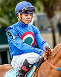 HALLANDALE BEACH, FL - Photo of Emisael Jaramillo taken December 6, 2015 at Gulfstream Park in Hallandale Beach, FL. (Photo by Bob Aaron/Eclipse Sportswire/Getty Images)